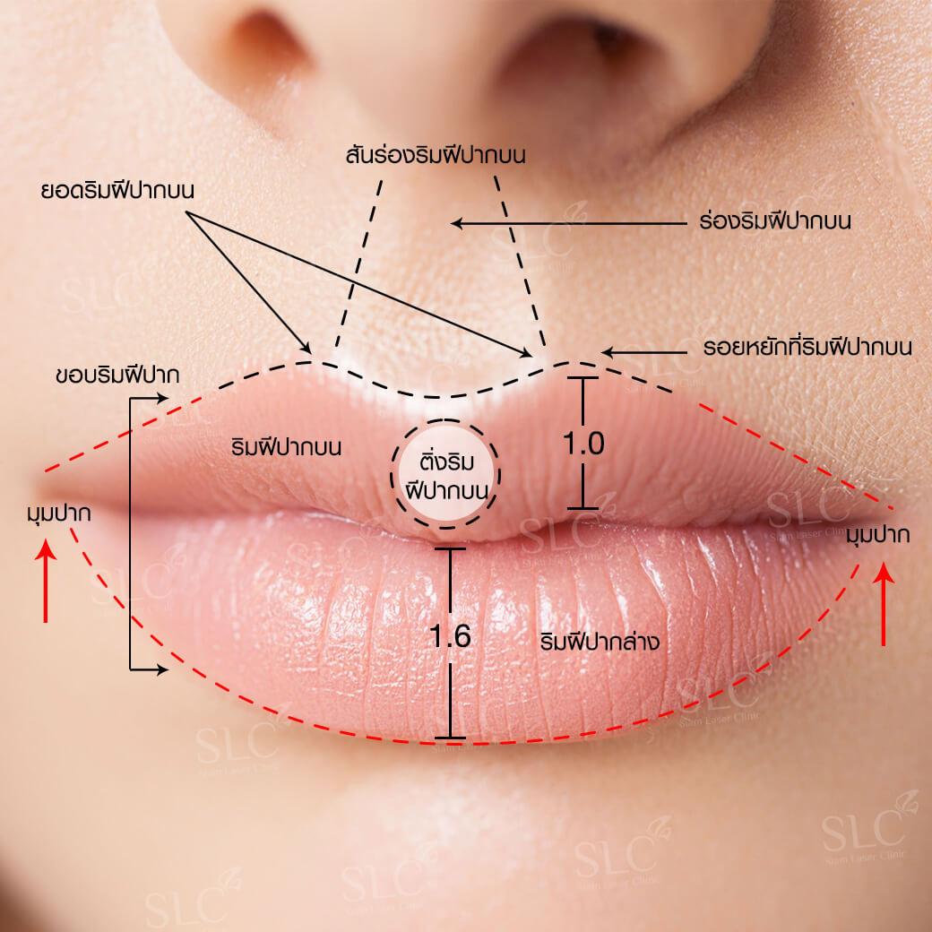 ปากสายฝอ